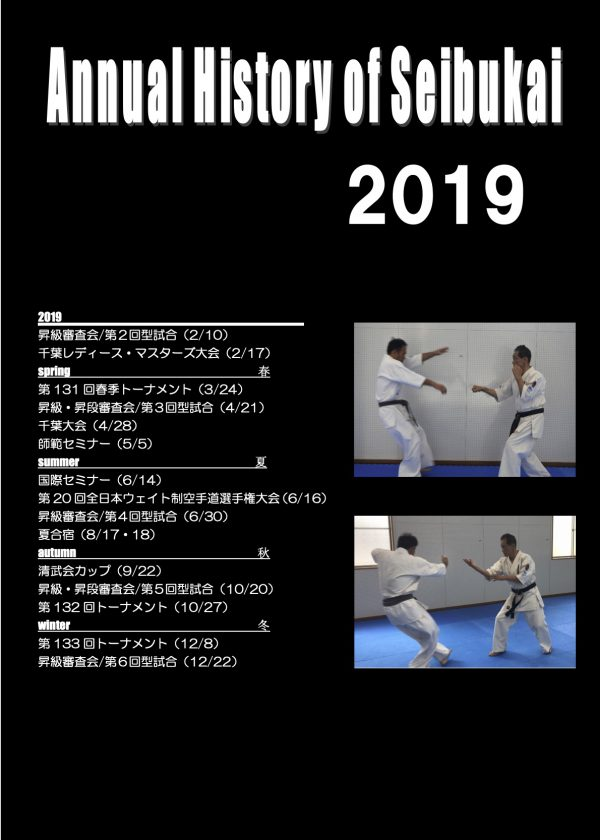 2019 annual history1